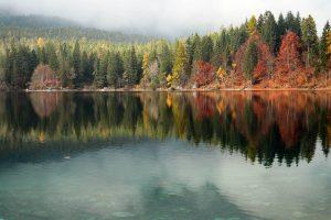 Lago di Tovel con alberi colorati in autunno