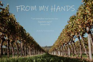 le foto di Giovanna Fiori realizzate per il concorso Vino e Fotografia